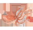 Octopus ##STADE## - look 41